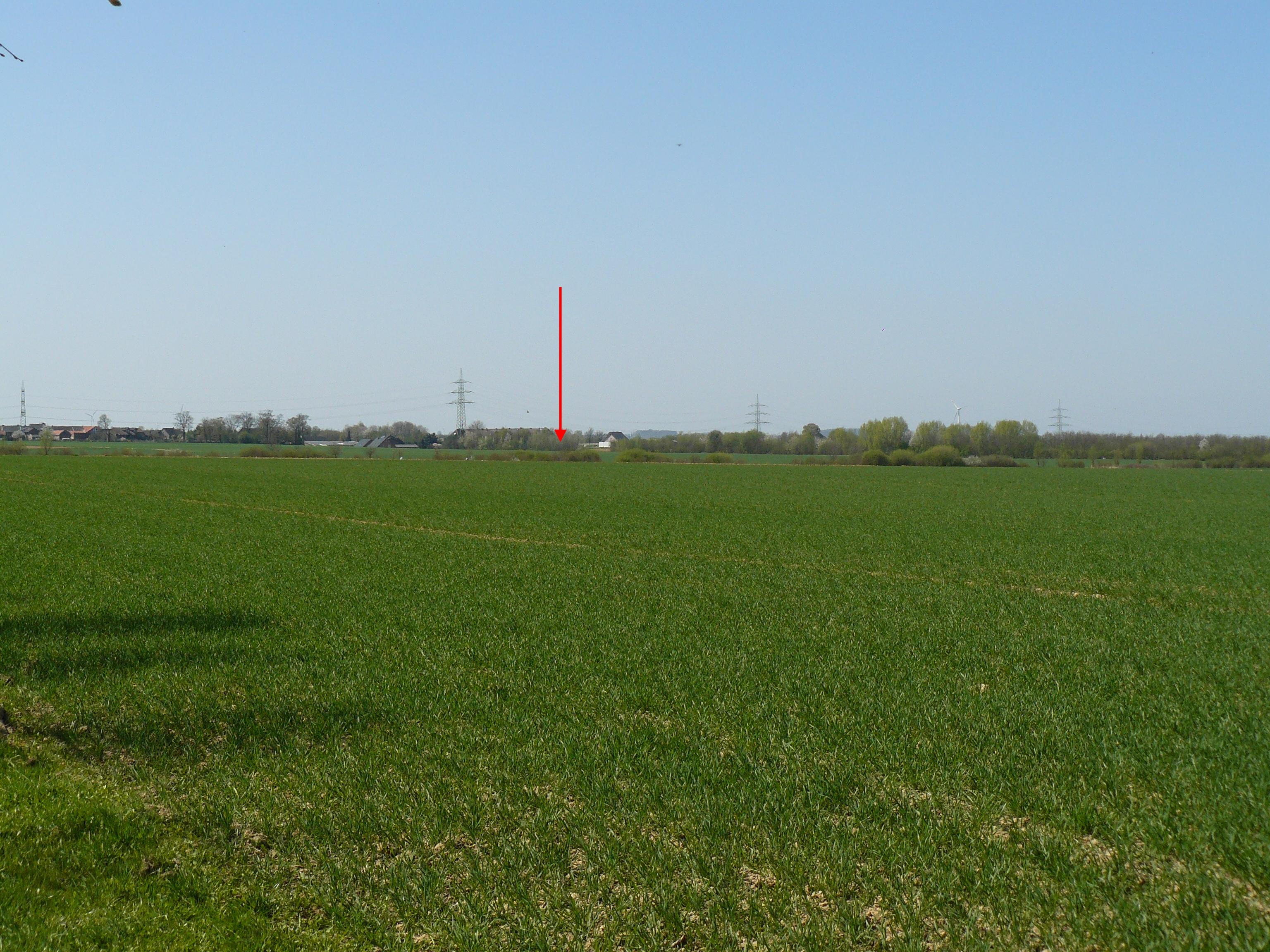 Grundstück am 18.04.2010 Bild 3